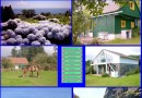 Seite Azorenurlaub.com wird neu gestaltet